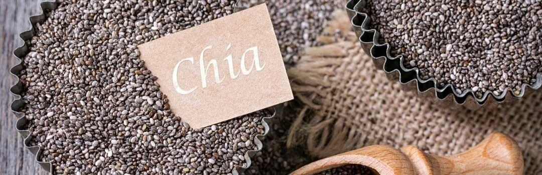Семена чиа – польза и вред, как употреблять